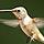 1001_1601423001_avatar