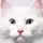 1001_380320769 large avatar