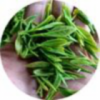 日照绿茶供应商-善缘结