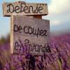 Provence∩__∩